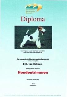diploma trimmen